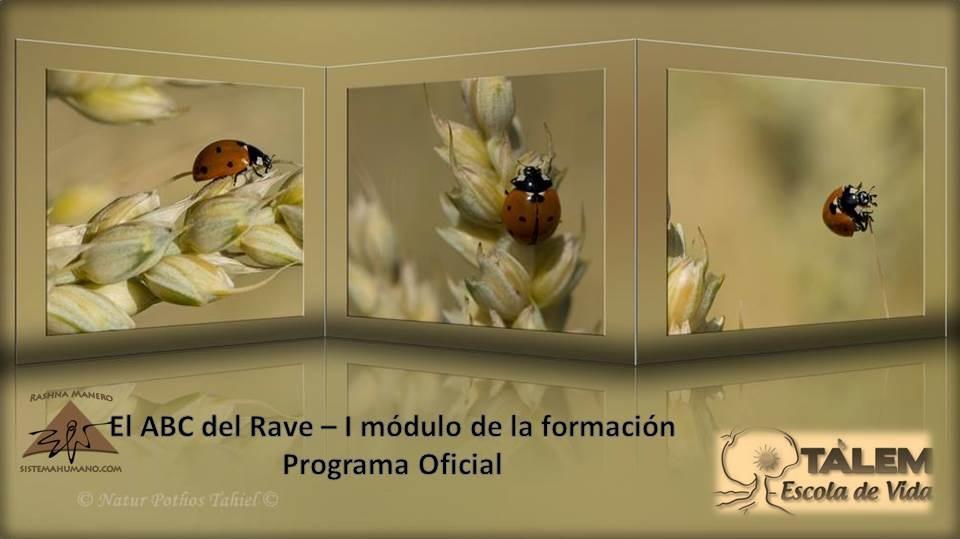 El ABC del RAVE, I módulo de la formación en Tarragona. Programa Oficial